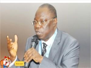 Prof. John Idoko, NACA DG