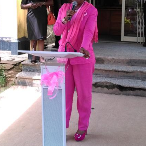 Why Nigeria Must go pink to fight cancer – Prof. Okoye
