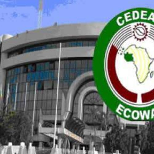 ECOWAS lists priority areas for region's children