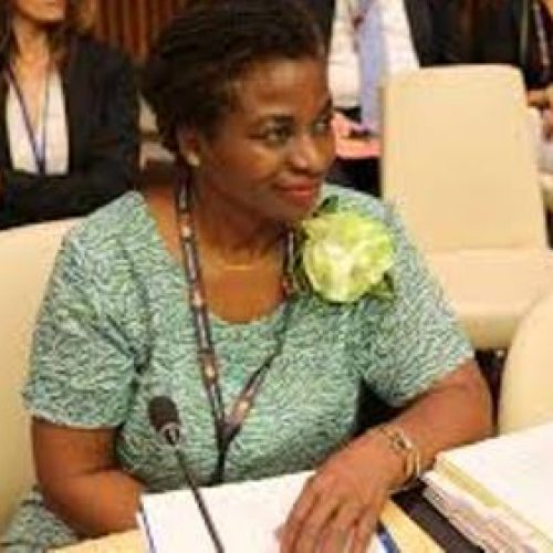 Nigeria setting good example on family planning – UNFPA Executive Director