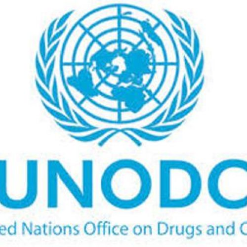 We didn't tell Nigeria to legalise  cannabis – UNODC